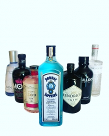 ANDERE GINS
